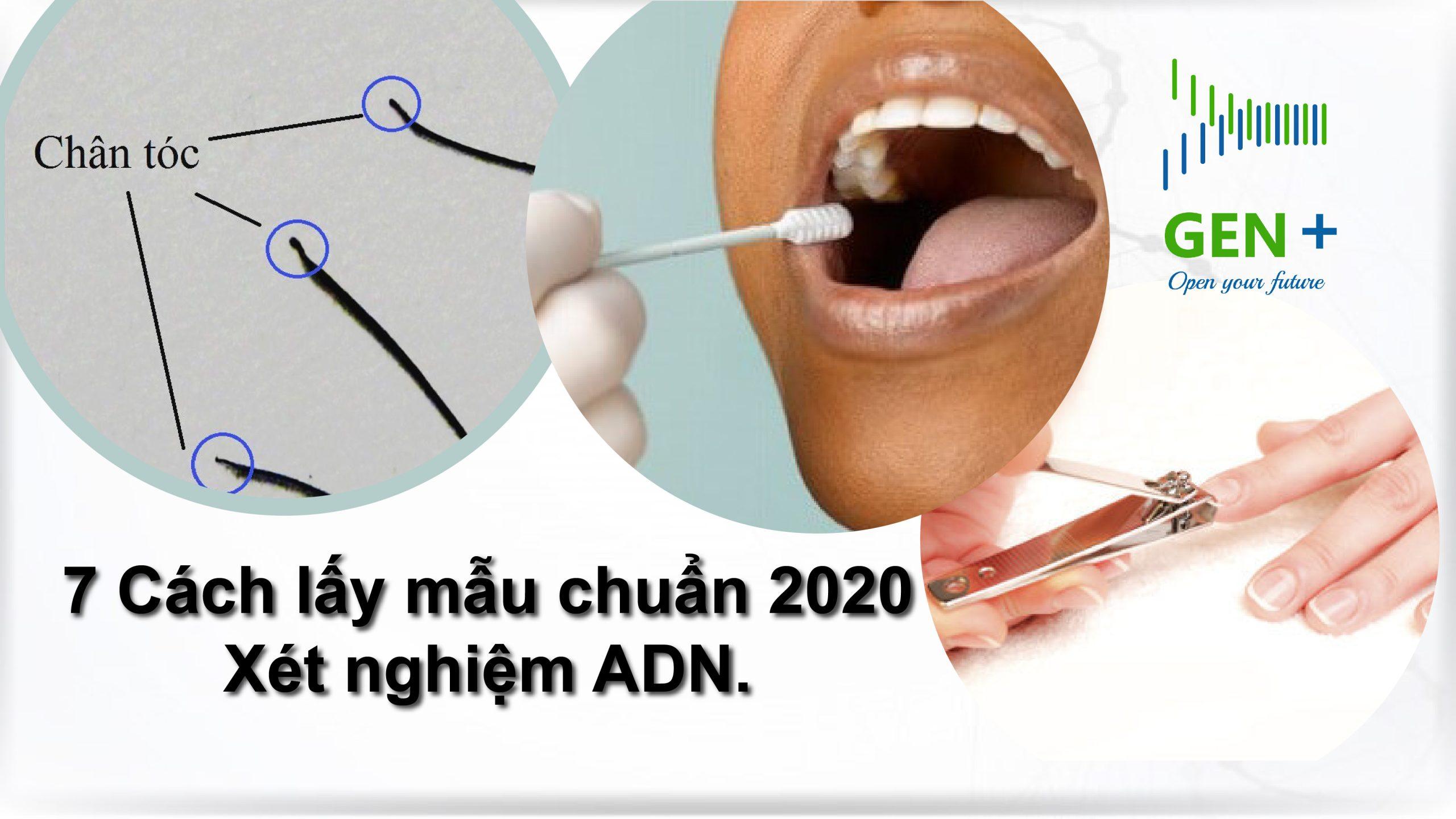 7 cách lấy mẫu xét nghiệm ADN chuẩn 2020