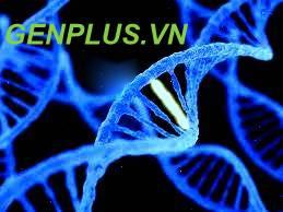 Xét nghiệm ADN bằng mẫu móng tay rất tiện lợi