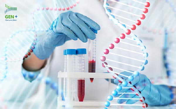 HỎI ĐÁP ADN: HỎI ĐÁP VỀ XÉT NGHIỆM ADN