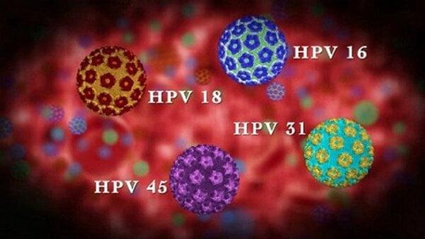 Type HPV trong nhóm nguy cơ cao